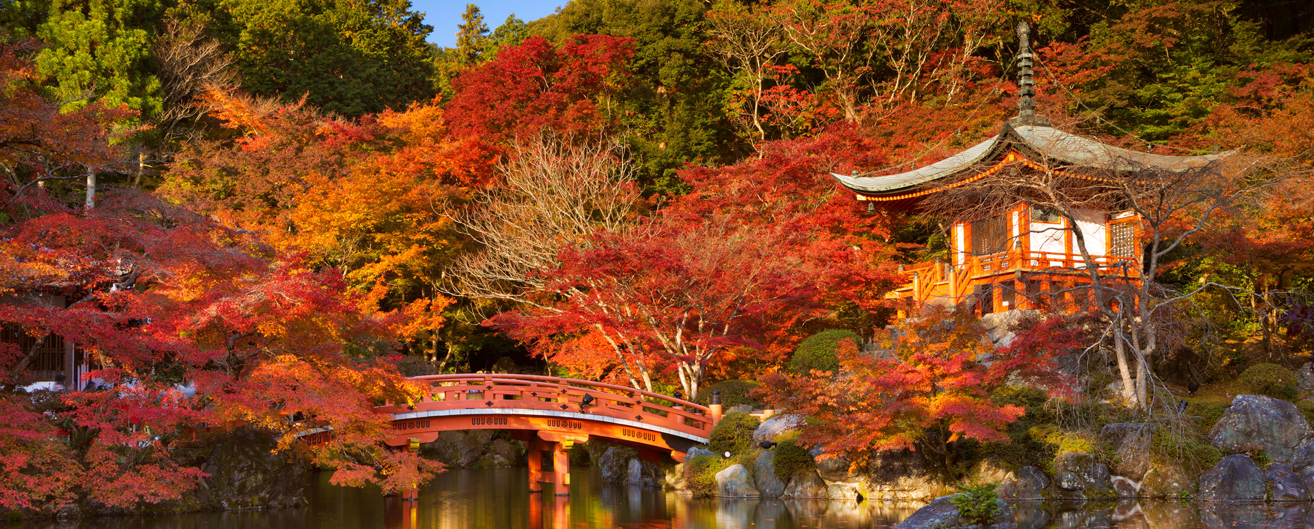 Japan Autumn colours