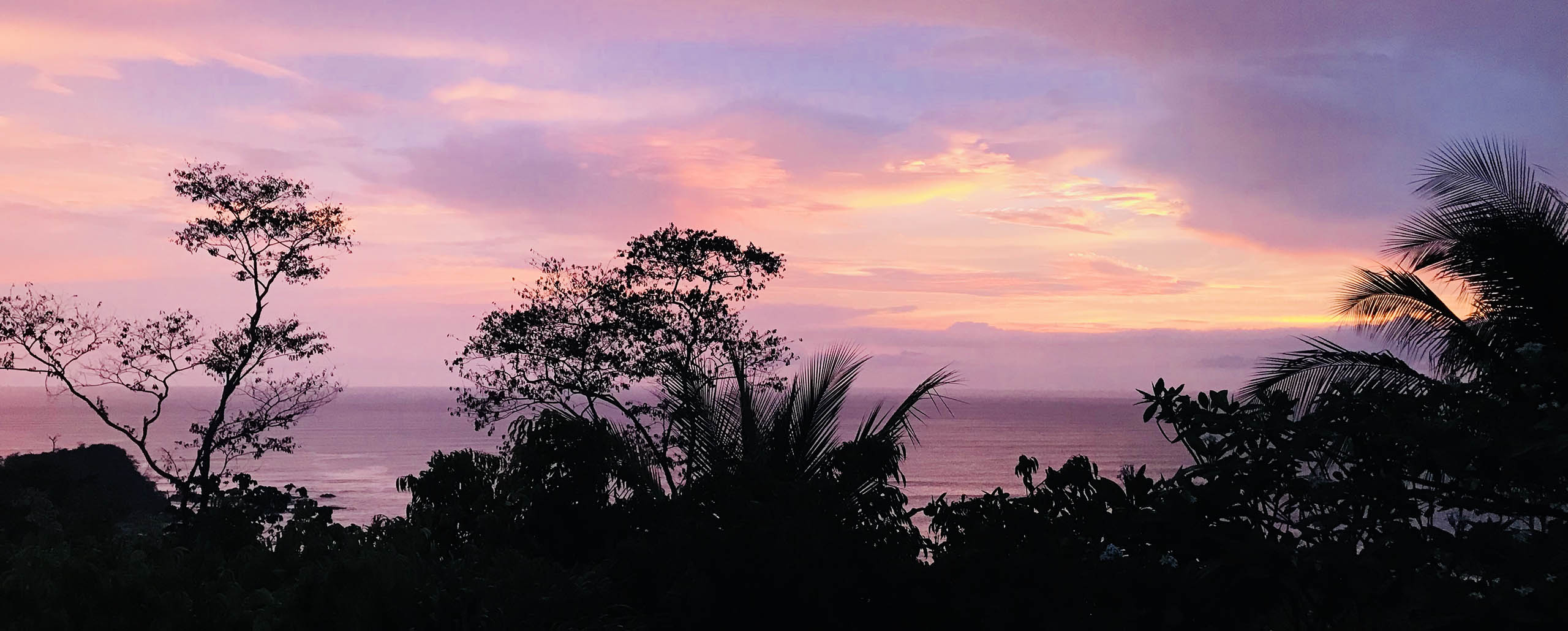Our Experience at Latitude 10: an eco-paradise in Costa Rica