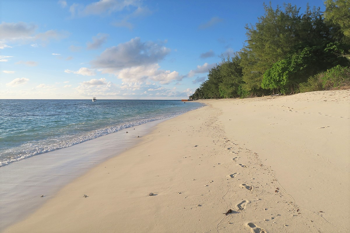 Conservation and sustainability on Denis Private Island, The Seychelles