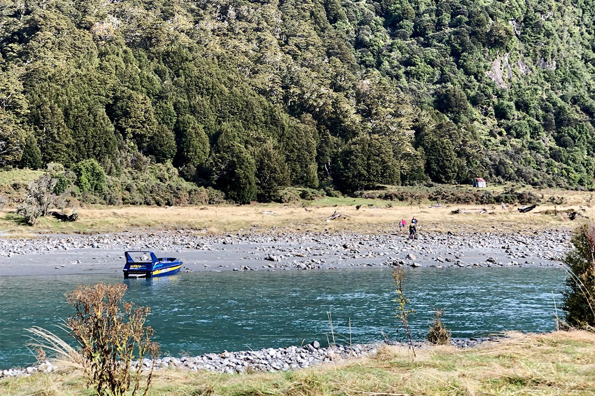 Penny in Mount Aspiring NP
