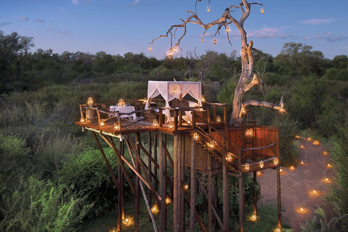 South Africa star bed on safari
